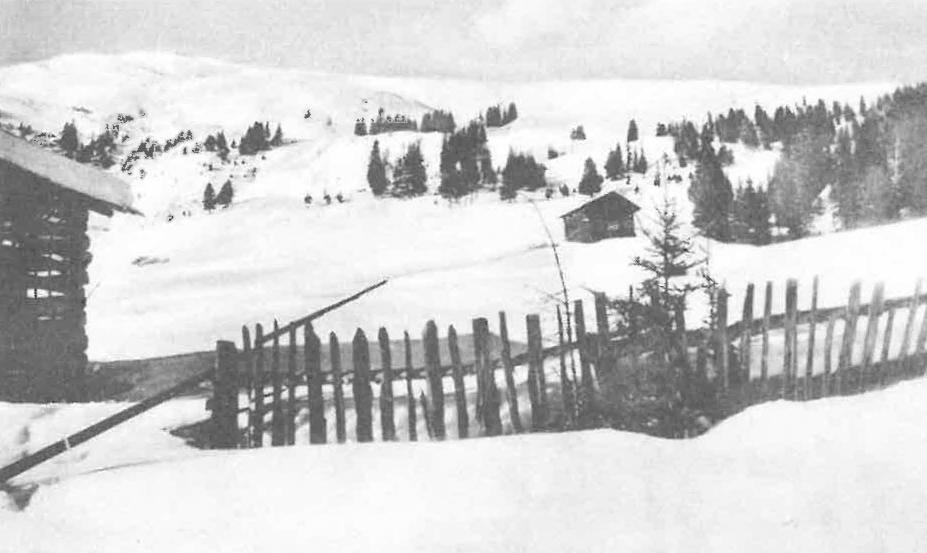 Blick auf Schönjöchl (2493m)